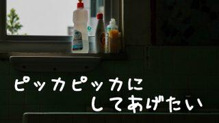 セスキ炭酸ソーダ水で掃除!<風呂,床,洗濯,トイレ,カビ>入浴剤にも